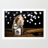 guinea pig Art Prints featuring Guinea Pig Photographer  by The Wheekly