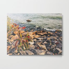Lovely Beach Metal Print