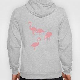 African Flamingo on Grey Hoody