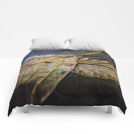 Water on a fall leaf  Comforters