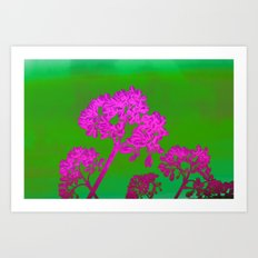 Funky Floral - JUSTART © Art Print