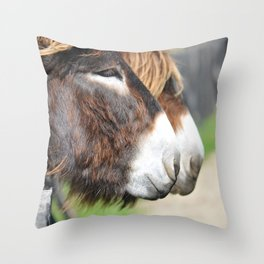 burros Throw Pillow