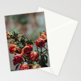 Windowsill Roses no. 1 Stationery Cards