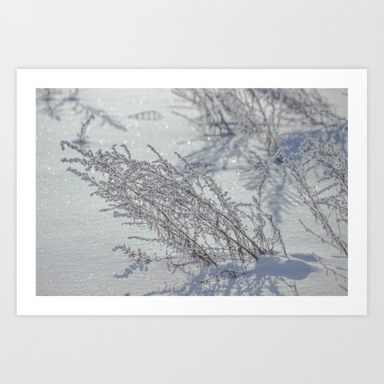 Winter grass Art Print