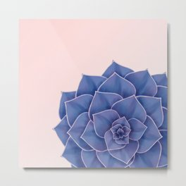 Big Echeveria Design Metal Print