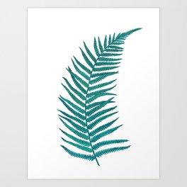 Blue Fern Art Print