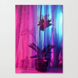 Plant 2 Canvas Print