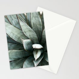 Botanical Succulents // Dusty Blue Green Desert Cactus High Quality Photograph Stationery Cards