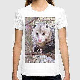 Possum Staredown T-shirt