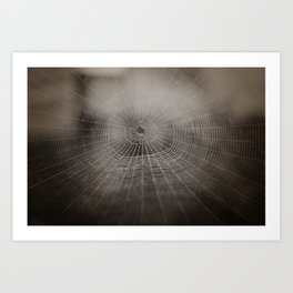 Oh What a Tangled Web We Weave.......  Art Print