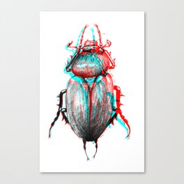 rgb beetle Canvas Print