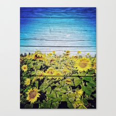Blended Sunflowers Canvas Print