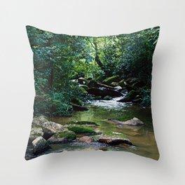 Jungle River Throw Pillow