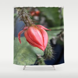 Beautiful Cactus Bud Shower Curtain