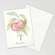 Prunus Persica (Peach) Stationery Cards