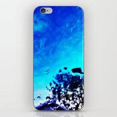 Morning After the Rain iPhone & iPod Skin