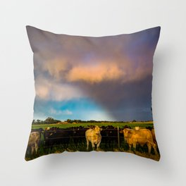 Bovine Shine - Cattle Gather on Stormy Day in Kansas Throw Pillow