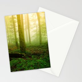 Misty Green Forest Photography Stationery Cards