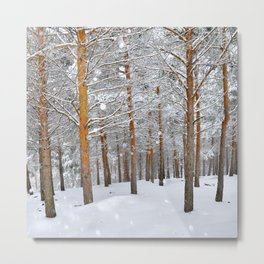 """Into the deep forest. Snowing"" Metal Print"