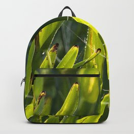 Watercolor Spider Web 03 Backpack