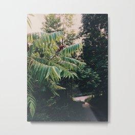 Pathway to the garden Metal Print