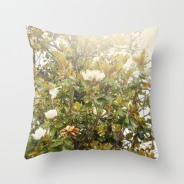 Ficus tree Throw Pillow