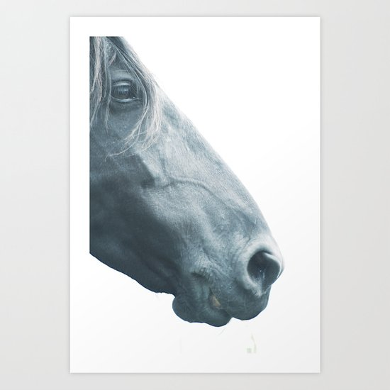 Horse head - fine art print n° 2, nature love, animal lovers, wall decoration, interior design, home by stefanoreves