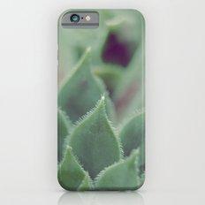 SIMPLY SUCCULENT Slim Case iPhone 6s