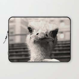 Baseball Ostrich Laptop Sleeve