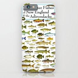 Illustrated New England and  Adirondacks Game Fish Identification Chart iPhone Case