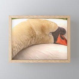 sleep Tight Framed Mini Art Print