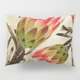 Vintage Repens Proteas Pillow Sham