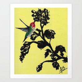 Calliope Hummingbird - Yellow Art Print