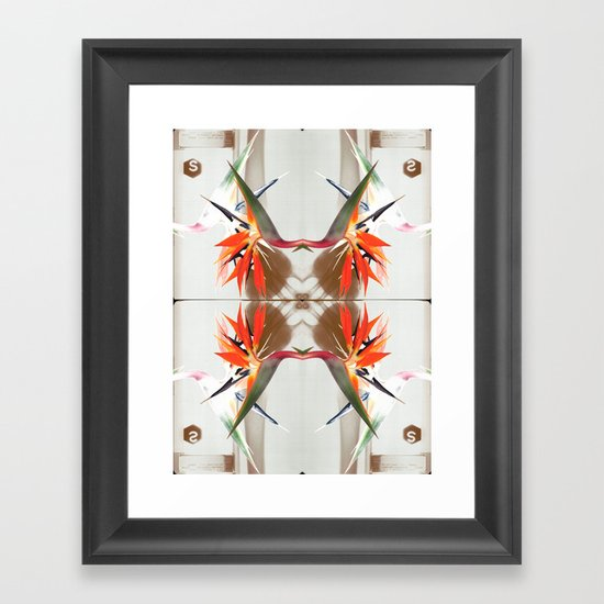 x-rays and mysterious Sterlizia Framed Art Print