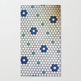 Historic Hexagons Canvas Print