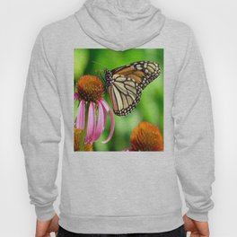 Spotted Butterfly on Cone Flower Hoody
