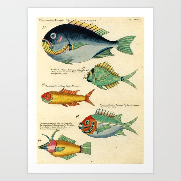 """Fishes from Louis Renard's """"Poissons, ecrevisses et crabes"""" (1754) Art Print"""