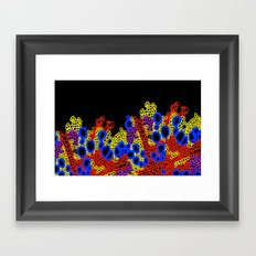 Plant Stem Microscopy; Phloem and Xylem Framed Art Print