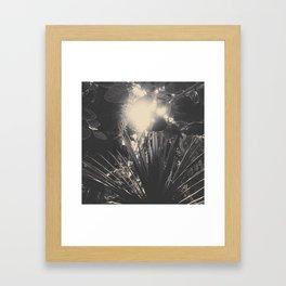 Solar plants Framed Art Print
