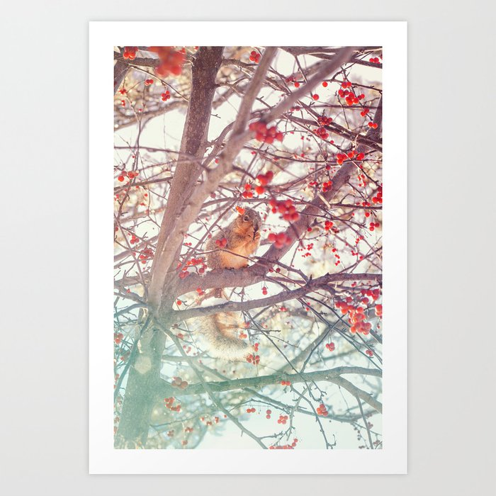 Squirrel Meal on a Cherry Tree Art Print