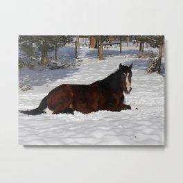 #406 winter horse Metal Print