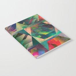 hy^xy Notebook