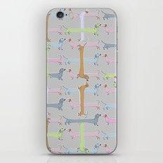 Going Dachs iPhone & iPod Skin