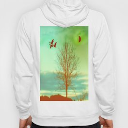 bird flight Hoody