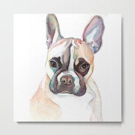 French Bulldog Portrait, Cute Frenchie Dog Metal Print
