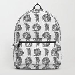 Bear Necessities #1 Bearly Secret Backpack