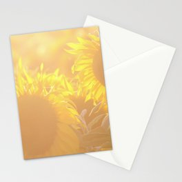 Glowing in Sunlight Sunflower Photography Stationery Cards