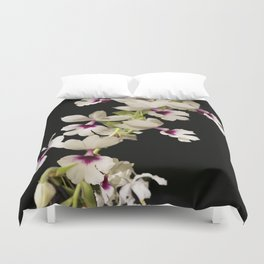 Calanthe rosea Orchid Duvet Cover