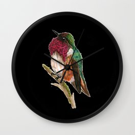 Wine-throated Hummingbird Wall Clock