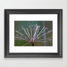 Gone But Not Forgotten Framed Art Print